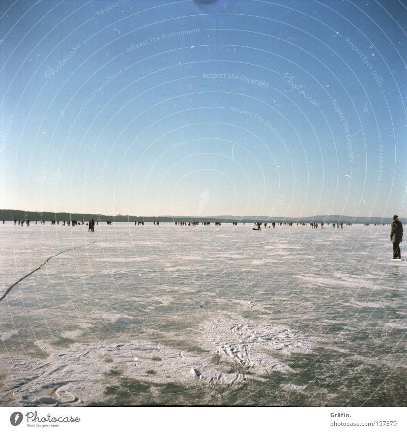 Eiswinter Mensch Himmel Winter kalt Menschengruppe See Horizont gefroren frieren Schlittschuhlaufen Karavane Niedersachsen Steinhuder Meer