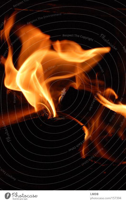 -- warm -- Wärme Holz Energiewirtschaft Brand Feuer brennen gemütlich Flamme Brennholz züngeln