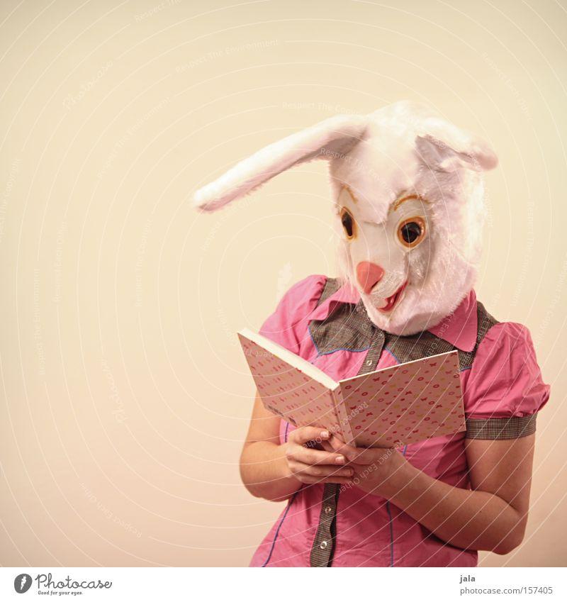 Schlauer Hase Mensch weiß Tier Buch lustig rosa lesen Ostern Ohr Maske Karneval Säugetier Hase & Kaninchen klug Karnevalskostüm Medien