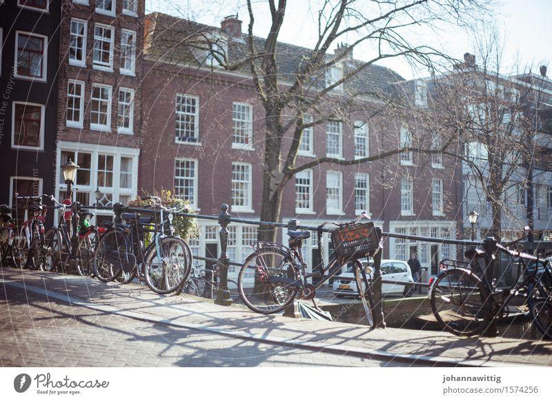 schonwieder zur richtigen zeit am richtigen ort. Ferien & Urlaub & Reisen Ausflug Freiheit Sightseeing Städtereise Fahrradtour Sommer Tradition Stadt Amsterdam