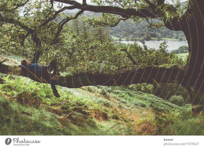 Hideaway Mensch Frau Natur Pflanze Baum Erholung Landschaft ruhig Ferne Erwachsene Umwelt Leben Herbst feminin Lifestyle Freiheit