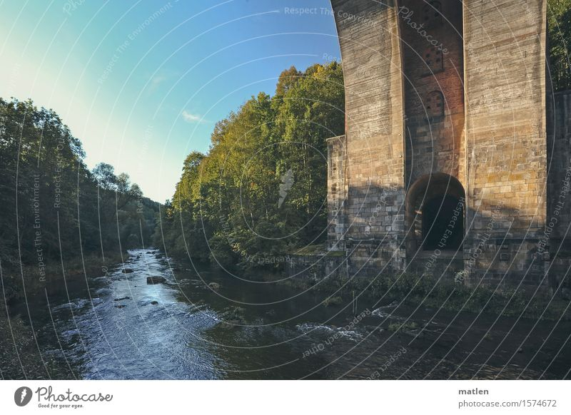 Göltzschtal Landschaft Pflanze Wasser Himmel Wolkenloser Himmel Wetter Schönes Wetter Baum Gras Wildpflanze Wald Küste Flussufer Brücke Mauer Wand natürlich