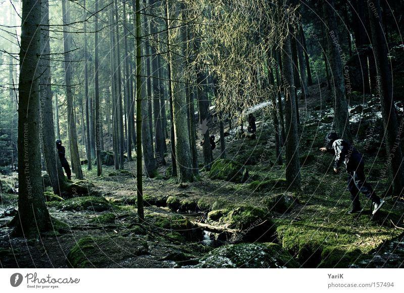 assassins Ninja Kämpfer Attentäter Hinterhalt verstecken Wald Baum Sonnenstrahlen beobachten Bach grün Winter geheimnisvoll gefährlich erspähen