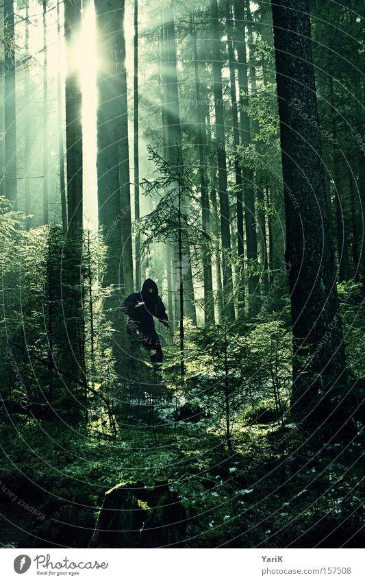 i believe in ninjas Baum Wald gefährlich Maske beobachten geheimnisvoll verstecken Tarnung Ninja Söldner vermummen Lichtstrahl Kämpfer vermummt Kampfanzug