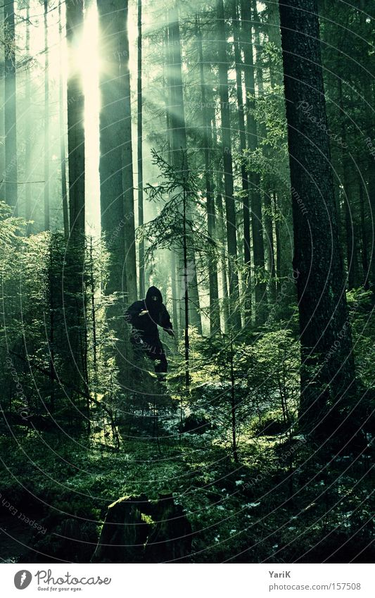 i believe in ninjas Ninja Wald Sonnenstrahlen Kämpfer Baum Lichtstrahl vermummen vermummt geheimnisvoll Tarnung verstecken Maske Kampfanzug beobachten