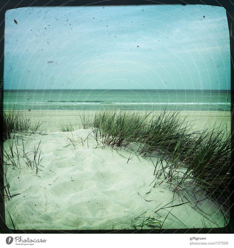 vintage sea Ostsee Prerow Darß Strand Sand Meer Wasser Ferne Himmel Horizont blau Ferien & Urlaub & Reisen Küste schön Stranddüne ttv through the viewfinder