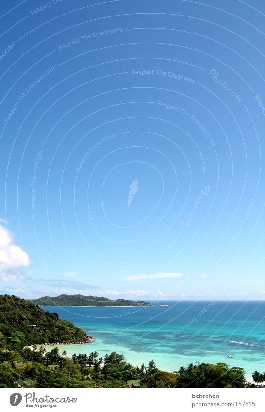 ausblick schön Himmel Meer blau Strand Wolken Ferne Freiheit Küste Aussicht Palme Fernweh traumhaft Afrika Seychellen Praslin