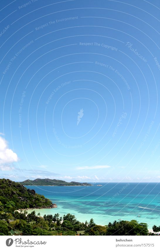 ausblick Seychellen Aussicht Meer blau Himmel Palme Trauminsel Wolken Fernweh Ferne Freiheit schön traumhaft Strand Küste praslin