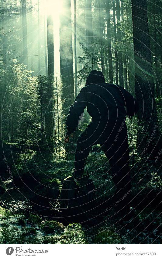 i am a fucking ninja Baum Wald gefährlich Maske beobachten geheimnisvoll verstecken Tarnung Ninja Soldat Söldner vermummen Lichtstrahl Kämpfer vermummt
