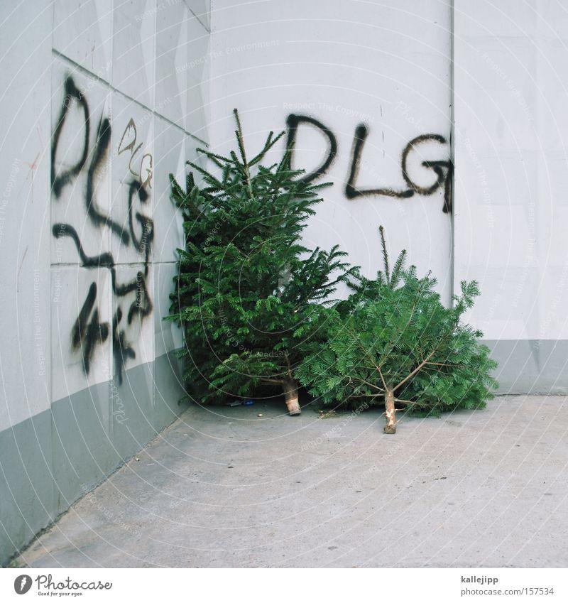 das lästige grün Weihnachten & Advent Baum Symbole & Metaphern Zweig Wirtschaft Tanne ökologisch wegwerfen Waldsterben ausgemustert