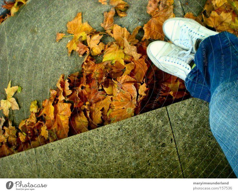 herbstzeitlosigkeit weiß Blatt Herbst Glück Denken Wärme Schuhe braun Jeanshose gemütlich