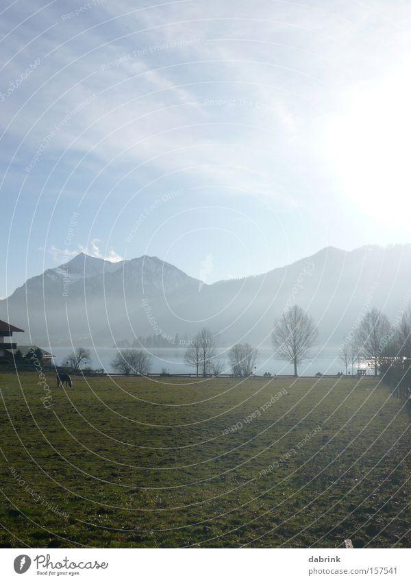 Schliersee1 Alpen See Winter Berge u. Gebirge Weide Gegenlicht Bayern Berpanorama