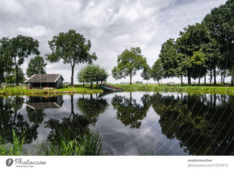 Spieglein Spieglein Leben harmonisch Erholung ruhig Meditation Ferien & Urlaub & Reisen wandern Haus Garten Natur Landschaft Wasser Himmel Wald Seeufer Bucht