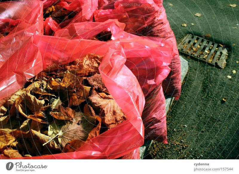 Bereitgestellt Natur Blatt Ferne Leben Herbst Tod Müll Vergänglichkeit obskur Kunststoff Jahreszeiten Tüte Verpackung wertlos