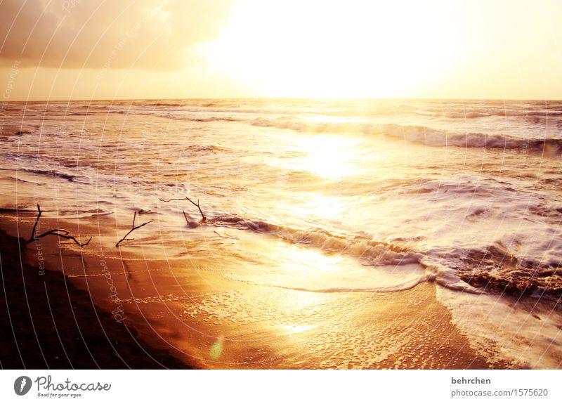 goldig Himmel Natur Ferien & Urlaub & Reisen schön Sommer Wasser Meer Erholung Wolken Strand Ferne Küste Freiheit Sand Horizont Tourismus