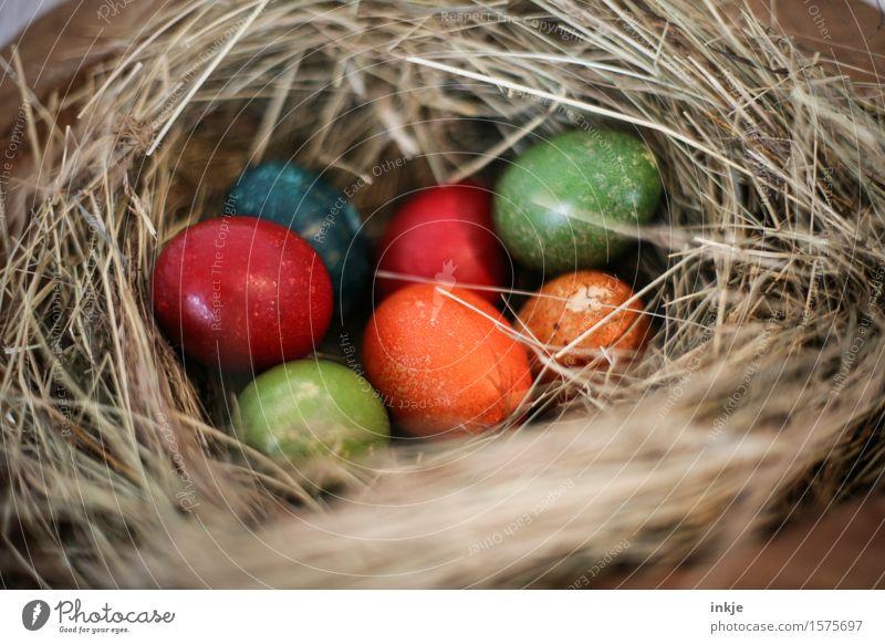 gefülltes Osternest Osterei Stroh liegen authentisch einfach natürlich mehrfarbig Gefühle Vorfreude Kreativität Tradition Farbfoto Innenaufnahme Nahaufnahme