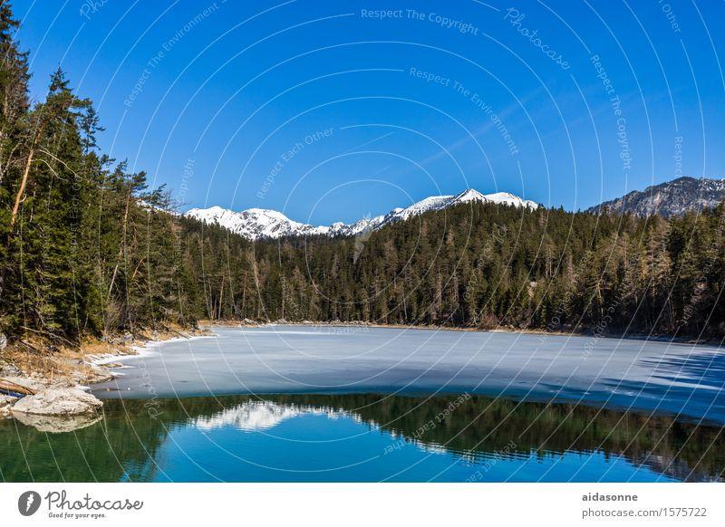 Eibsee Landschaft Wasser Himmel Wolkenloser Himmel Frühling Schönes Wetter Wald Alpen Berge u. Gebirge Seeufer Gefühle Stimmung Zufriedenheit friedlich Vorsicht