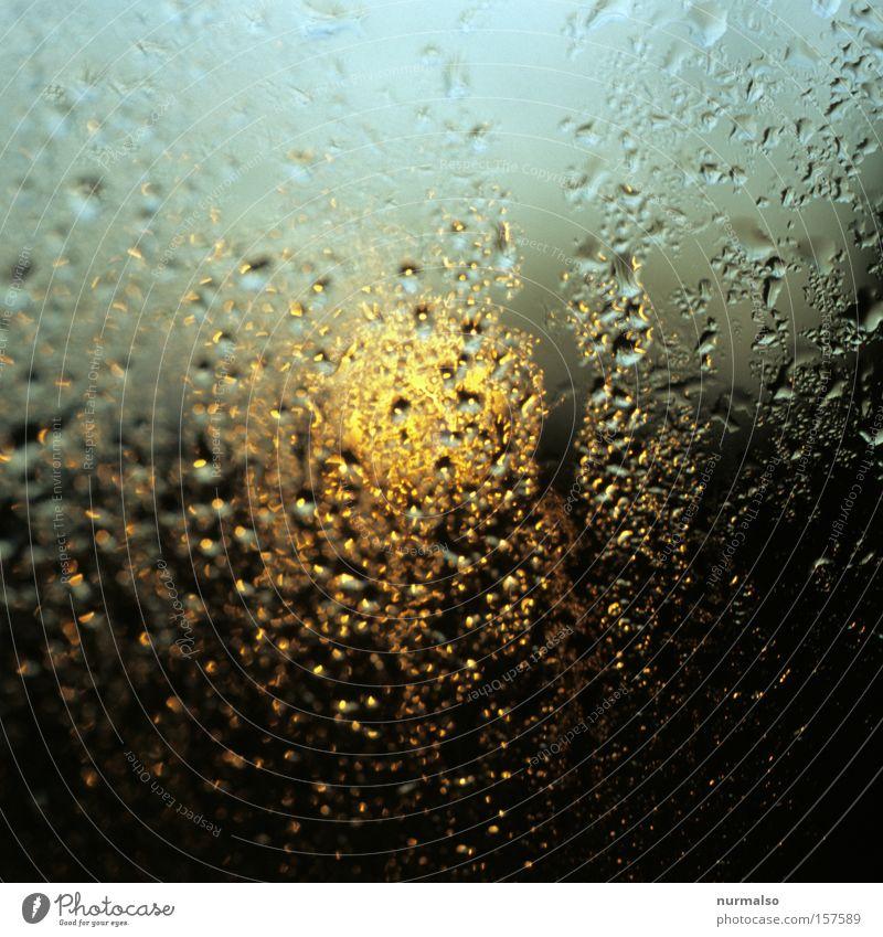 Nasser Morgen Tau Fensterscheibe Scheibe Wassertropfen Tropfen Sonne aufstehen Morgendämmerung Osten aufwachen Himmelskörper & Weltall verfallen Frühausteher