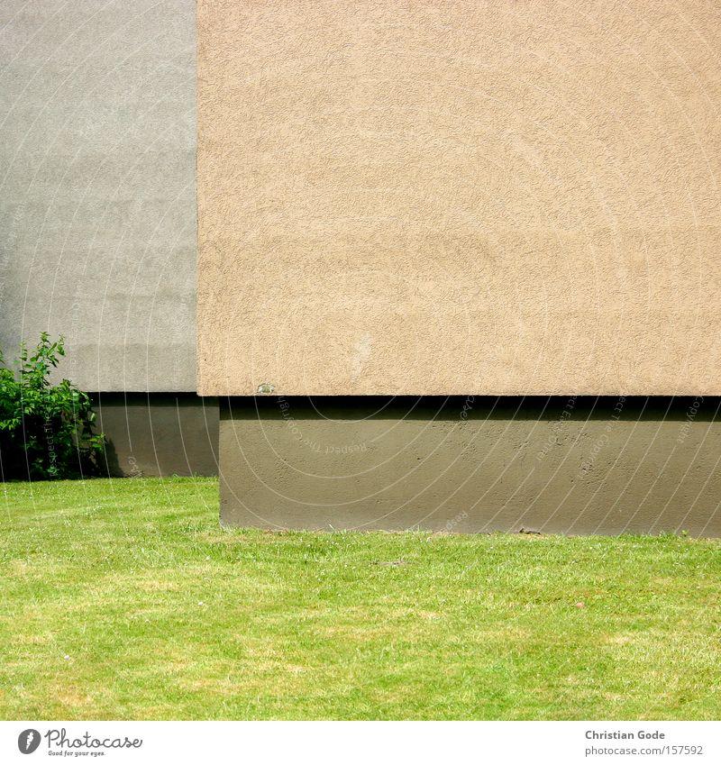 Horizontale Ecke Mauer Wand Sockel Wiese Rasen grün Sträucher Perspektive Schatten Bildausschnitt Putz orange grau Detailaufnahme Deutschland