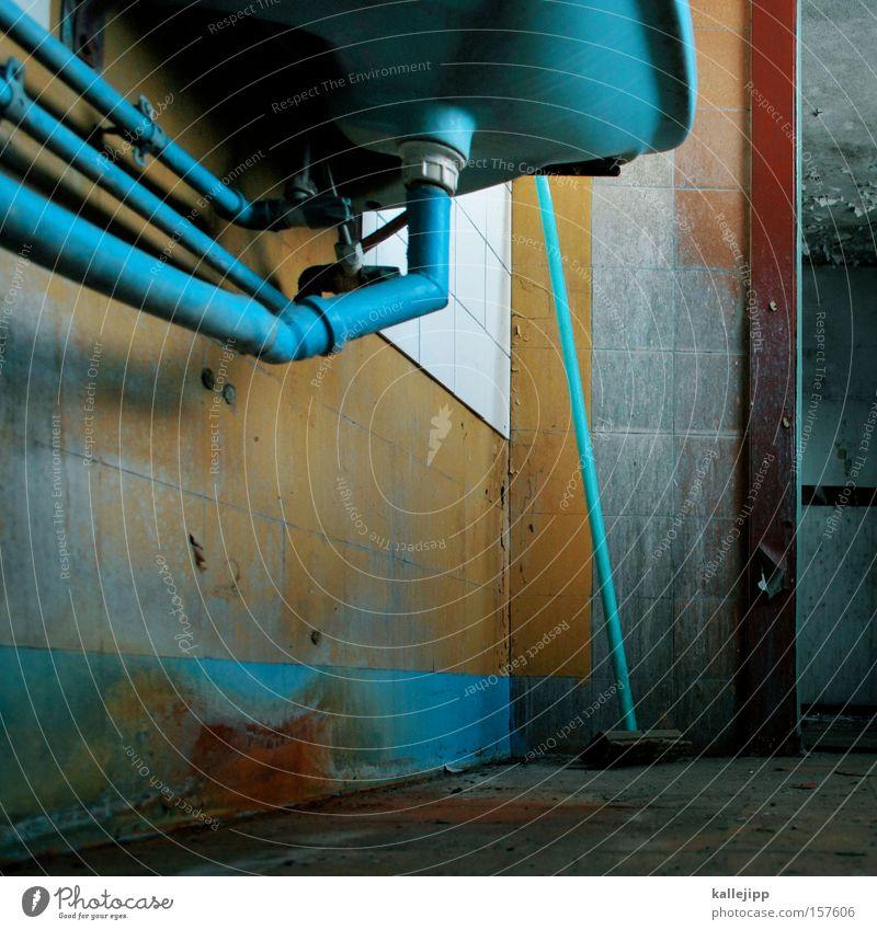die killepilze Waschbecken Bad Toilette sanitär Fliesen u. Kacheln Eisenrohr Röhren Leitung Besen Netz System Sauberkeit Schimmelpilze Pilz dreckig