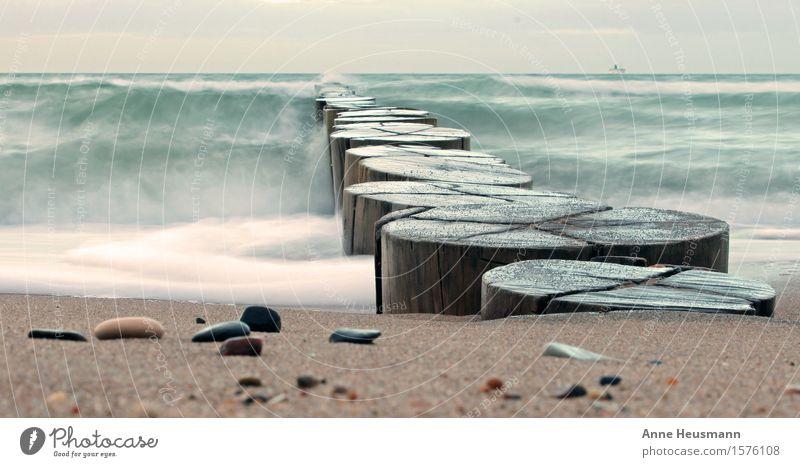 Buhnen an der Ostseeküste II Natur Ferien & Urlaub & Reisen blau Wasser Meer Strand kalt Umwelt Küste Holz Freiheit Schwimmen & Baden braun Sand