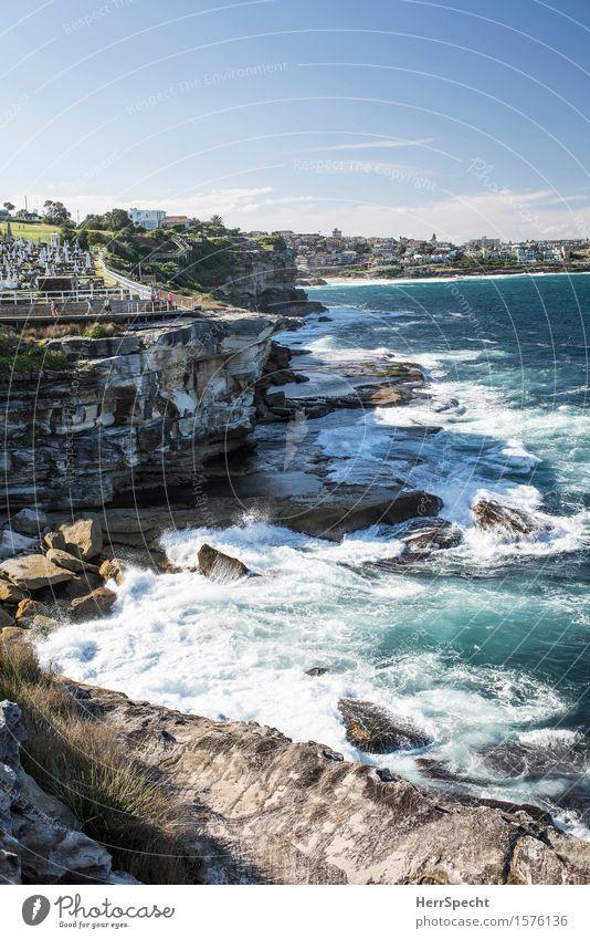 Clovelly to Bronte Ferien & Urlaub & Reisen Tourismus Ausflug Ferne Städtereise Natur Landschaft Sommer Wellen Küste Bucht Riff Meer Pazifik Sydney