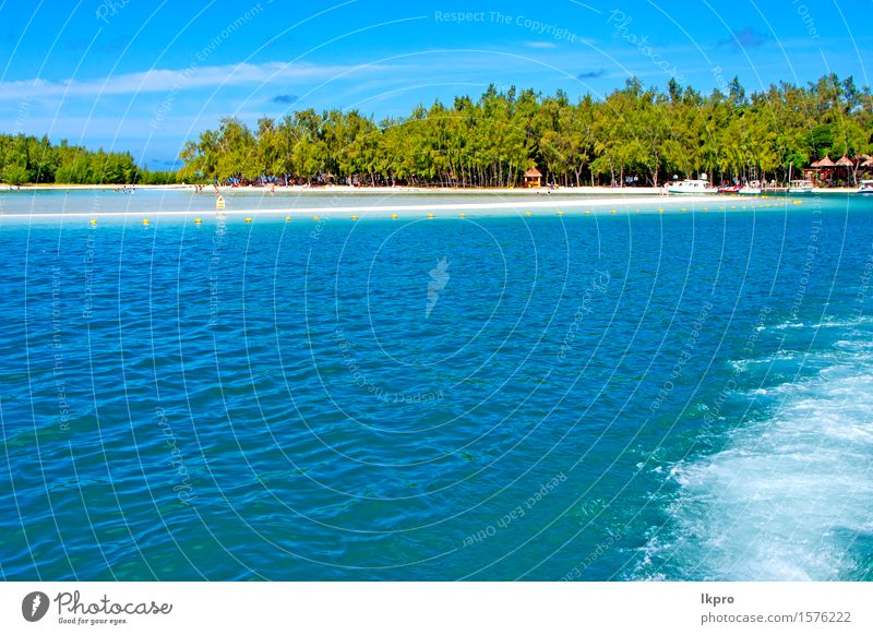Bergsandinsel-Himmel und -felsen Natur Ferien & Urlaub & Reisen blau grün Sommer weiß Baum Meer Erholung Wolken Strand schwarz Küste Freiheit Stein