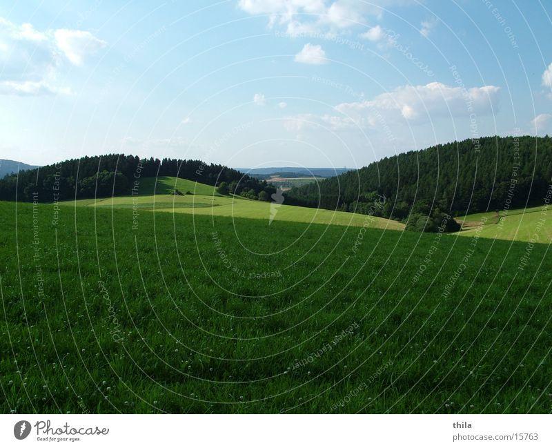 Grün, grüner ... Sauerland Himmel Ferne Wiese Berge u. Gebirge Feld Hügel Sommertag