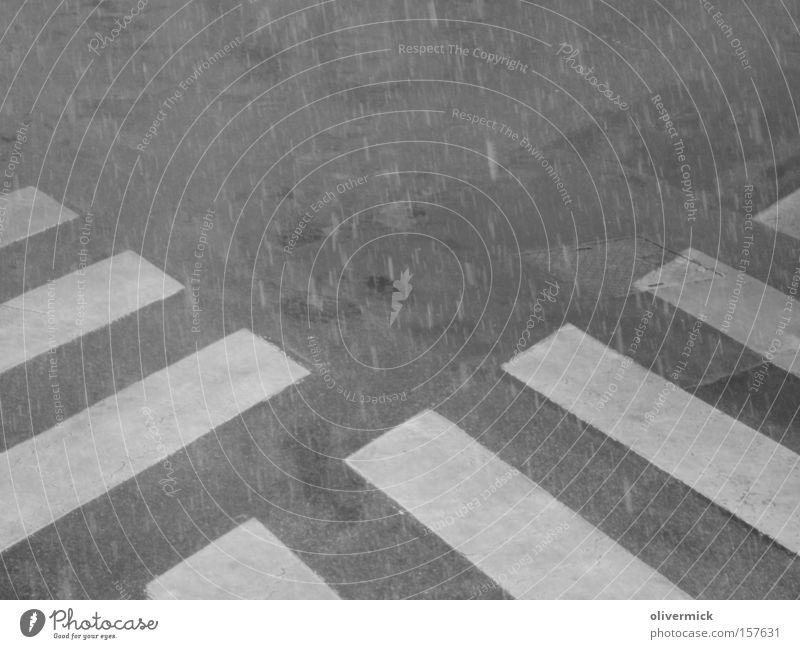 kreuzung der zebrastreifen Zebrastreifen Schnee Schneefall Schwarzweißfoto Verkehr Sicherheit Schneeflocke Verkehrsregel Winter Verkehrswege Respekt acht geben