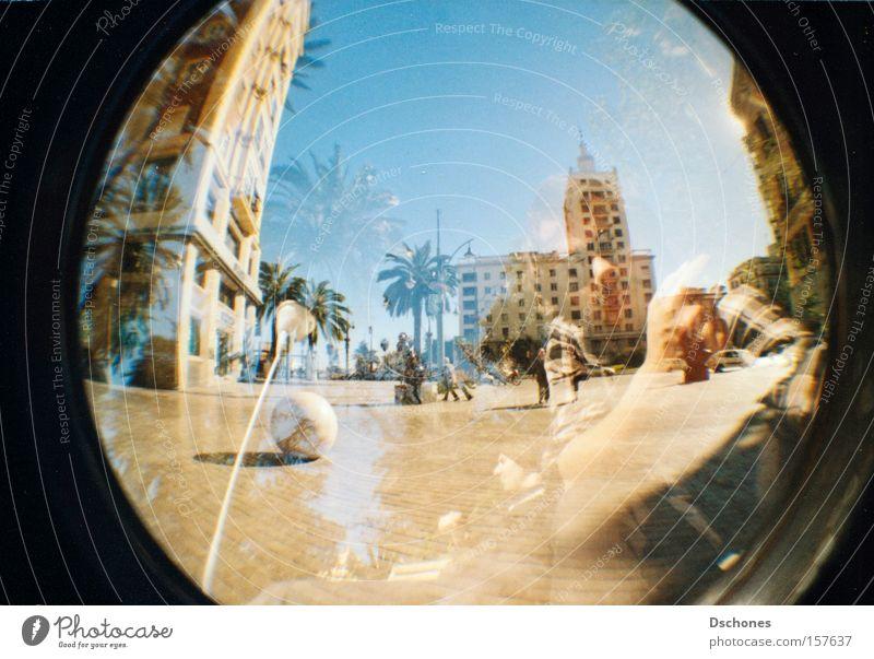 SCHÖN MAL EINEN ZISCHEN. Sonne Sommer Freude Ferien & Urlaub & Reisen Wärme Fischauge Lomografie heiß Spanien Palme Süden Baum
