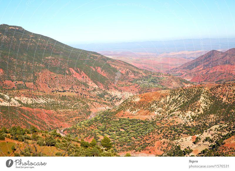 Afrika gemahlener Baum und niemand Tourismus Sommer Berge u. Gebirge Natur Landschaft Pflanze Sand Himmel Klima Hügel Felsen Oase Gebäude Stein rot Farbe Dades