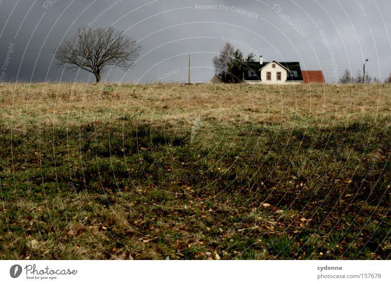 Grau. Herbst Himmel Haus Strommast Landschaft Idylle Jahreszeiten Baum Vergänglichkeit Häusliches Leben schön ästhetisch Natur Wiese grau Wetter