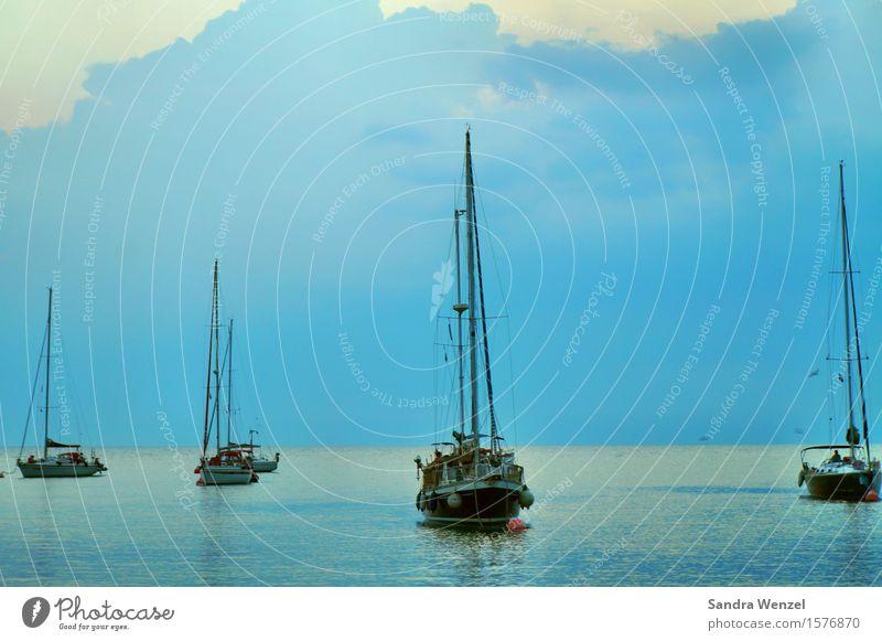 Novigrad Freizeit & Hobby Angeln Ferien & Urlaub & Reisen Ausflug Abenteuer Ferne Freiheit Sommer Sommerurlaub Meer Insel Wellen Wasser Schwimmen & Baden Segeln