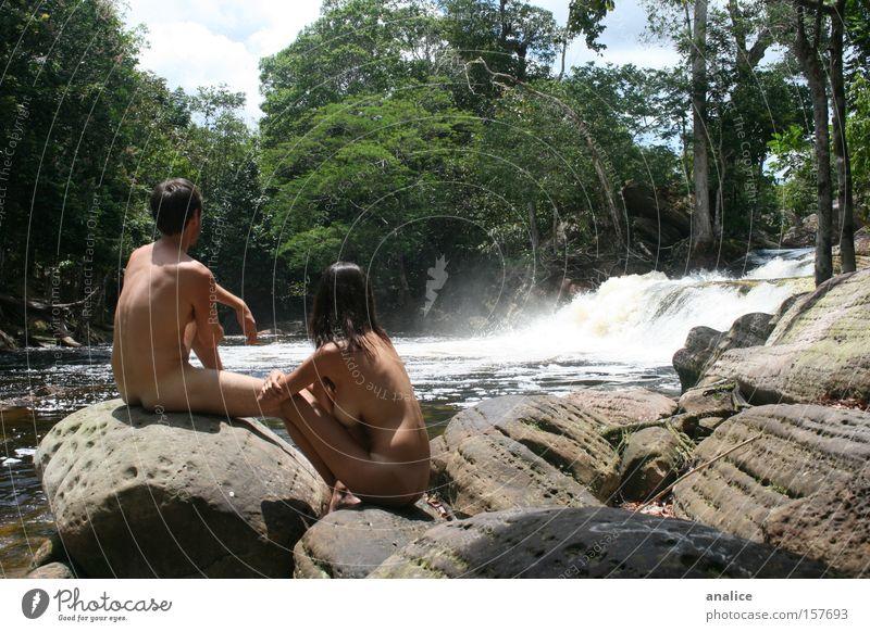 Akt Mensch Natur Wasser Baum Pflanze Erholung nackt Freiheit Paar Körper Felsen paarweise Stein harmonisch