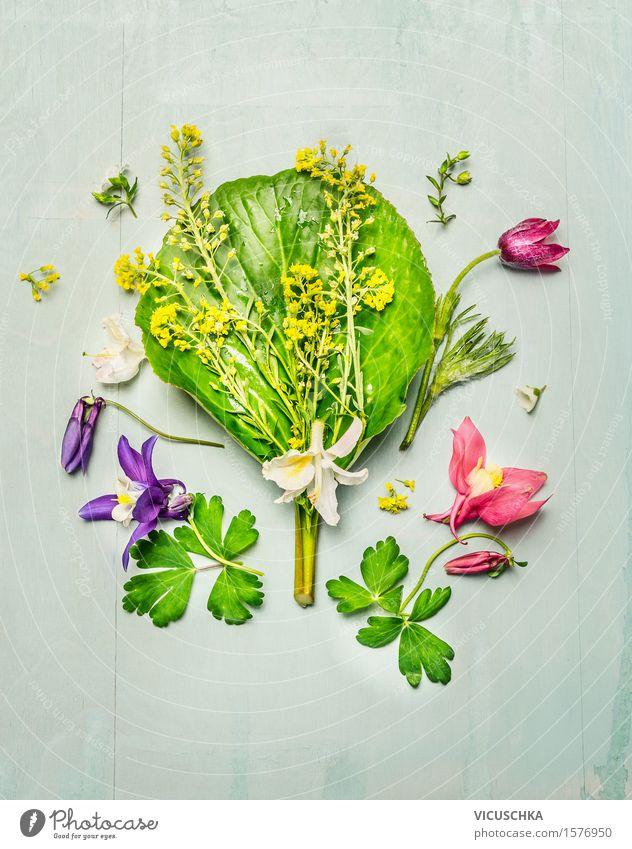 Gartenpflanzen mit bunten Blumen und Blättern Design Alternativmedizin Freizeit & Hobby Sommer Dekoration & Verzierung Natur Pflanze Frühling Sträucher Blatt