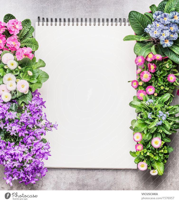 Notizblock mit Gartenblumen in Töpfen auf Stein Hintergrund Stil Design Freizeit & Hobby Sommer Dekoration & Verzierung Tisch Studium lernen Gartenarbeit
