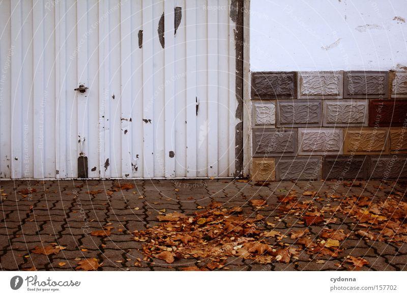 Ausfahrt Natur schön Blatt Haus Leben Herbst Traurigkeit Mauer Wind ästhetisch trist Häusliches Leben Vergänglichkeit Bürgersteig Jahreszeiten Garage