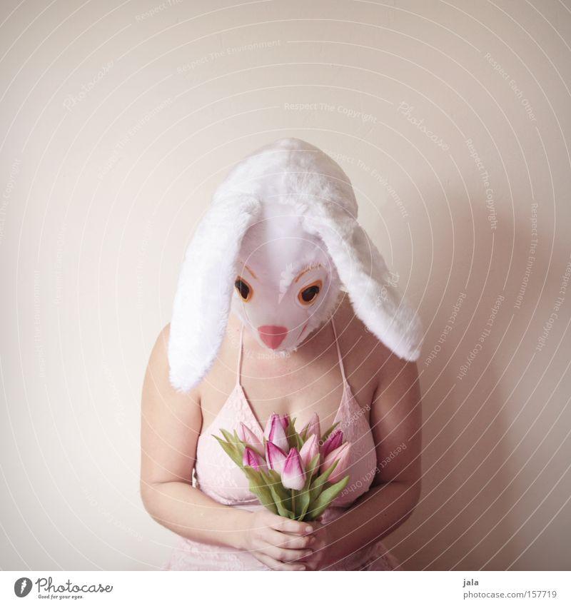 I'm sorry Hase & Kaninchen Osterhase Ostern Karneval verkleiden Tier weiß lustig Frau Ohr Karnevalskostüm Kostüm Blume Entschuldigung Freude Liebe