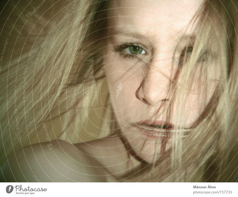 Stürmen & Wehen. Frau Gesicht Mund Schulter Wind blond rein schön Haare & Frisuren Auge Nase wehen