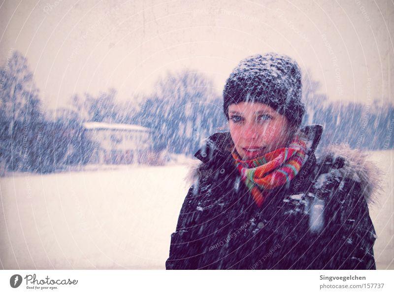 regina della neve Jugendliche blau Winter kalt Schneefall violett Mütze Mensch Schal