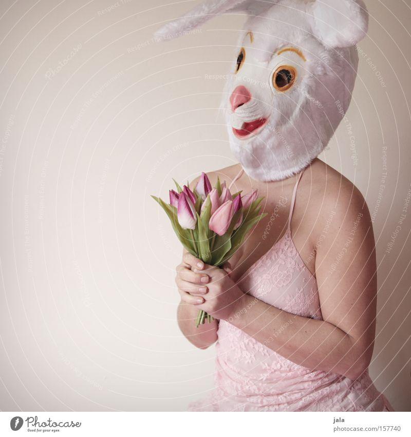 Blumen? Für mich? Frau weiß Freude Liebe Tier lustig Ostern Ohr Maske Karneval Hase & Kaninchen Kostüm Osterhase verkleiden Mensch
