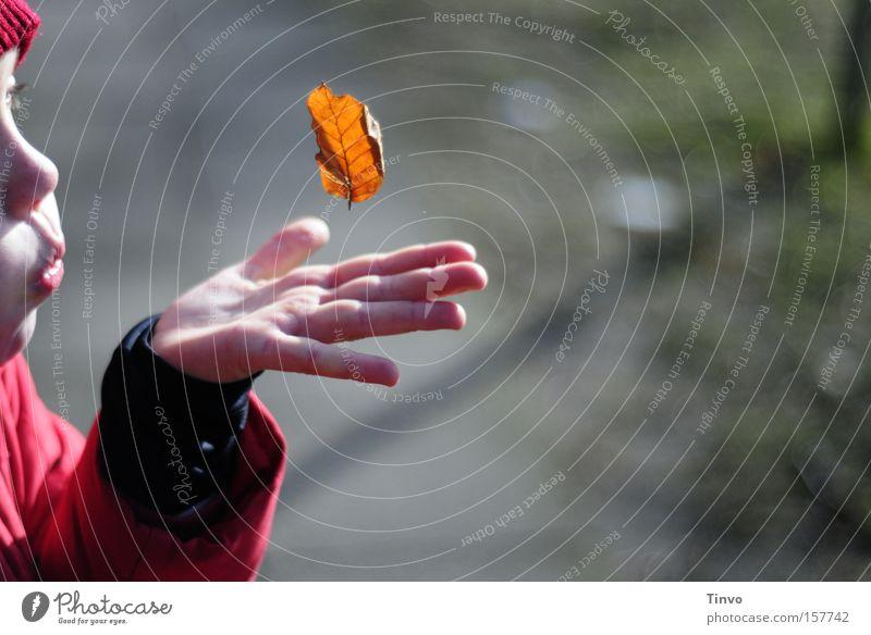 a single moment with you Kind Mädchen Blatt Hand Herbst Frieden blasen Mensch Kostbarkeit Schwerelosigkeit kindlich Kinderhand