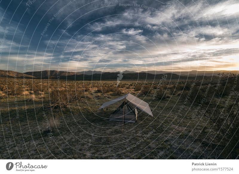 Zelt in der Anza-Borrego Wüste schön Ferien & Urlaub & Reisen Abenteuer Ferne Expedition Camping Sommer Berge u. Gebirge Umwelt Natur Landschaft Urelemente Erde