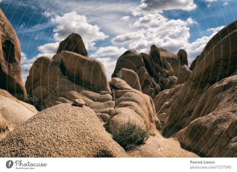 Felsengarten schön Wohlgefühl Zufriedenheit Ferien & Urlaub & Reisen Tourismus Ausflug Abenteuer Ferne Freiheit Expedition Sommer Berge u. Gebirge Umwelt Natur