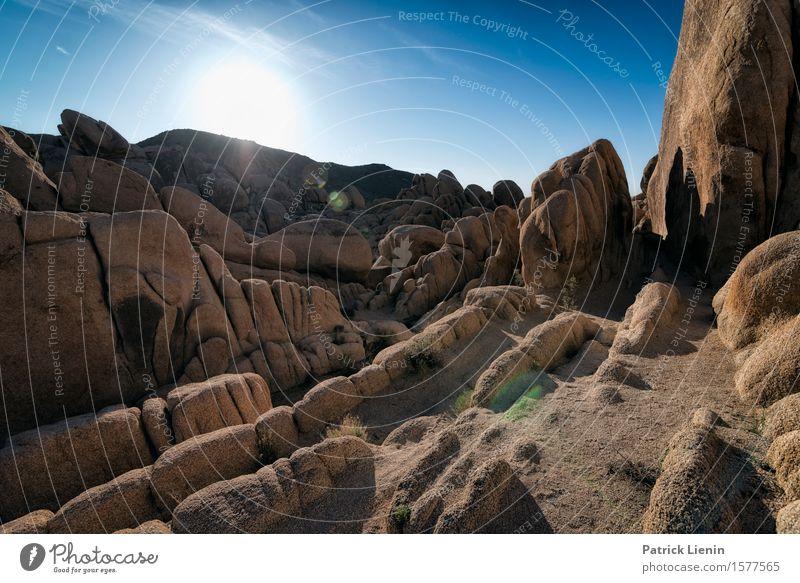 Joshua Tree National Park schön Wohlgefühl Zufriedenheit Ferien & Urlaub & Reisen Abenteuer Ferne Expedition Sommer Sonne Berge u. Gebirge Umwelt Natur