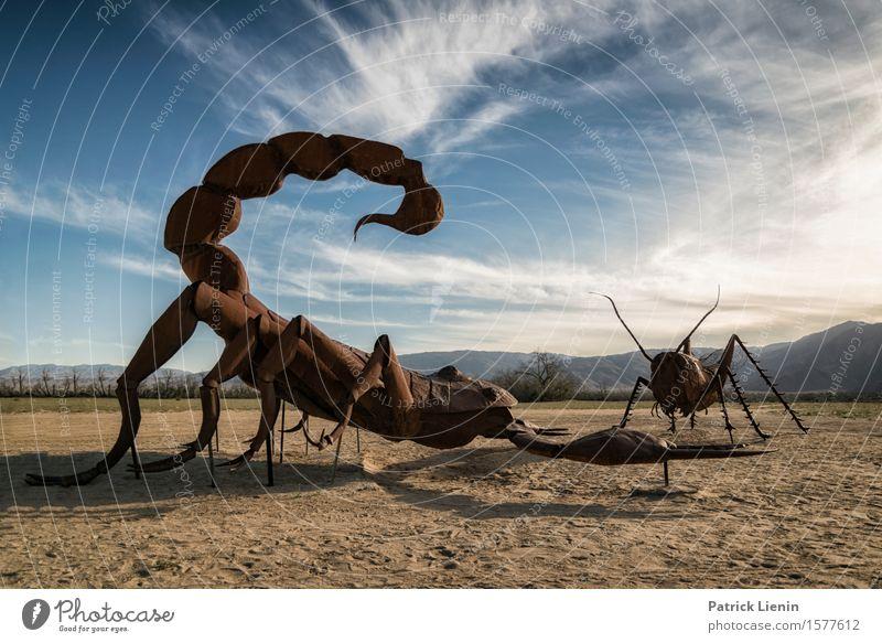 Insektenbekämpfung schön Ferien & Urlaub & Reisen Abenteuer Ferne Expedition Sommer Sonne Berge u. Gebirge Umwelt Natur Landschaft Tier Himmel Wolken Horizont