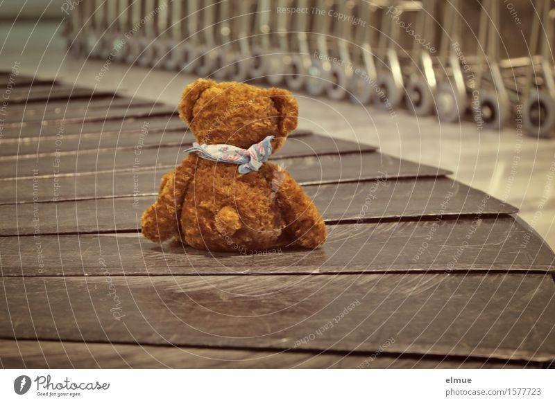 Teddy Per macht Urlaub (1) Freude Ferien & Urlaub & Reisen Ausflug Laufband Förderband Luftverkehr Flughafen Spielzeug Teddybär Stofftiere Halstuch
