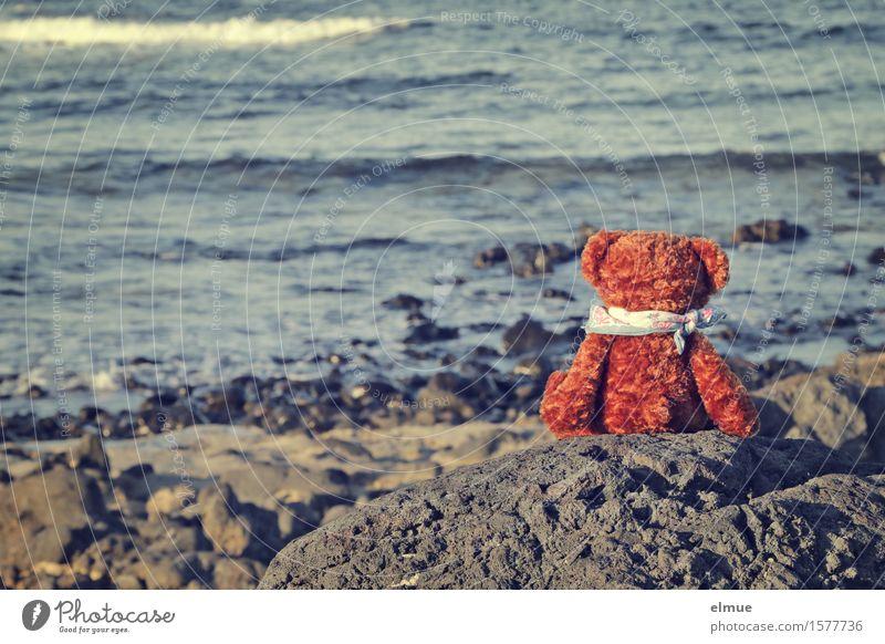 Teddy Per macht Urlaub (14) Ferien & Urlaub & Reisen Sommerurlaub Sonnenbad Wellen Küste Meer Teddybär Stofftiere Halstuch Blick sitzen klein Freude Glück