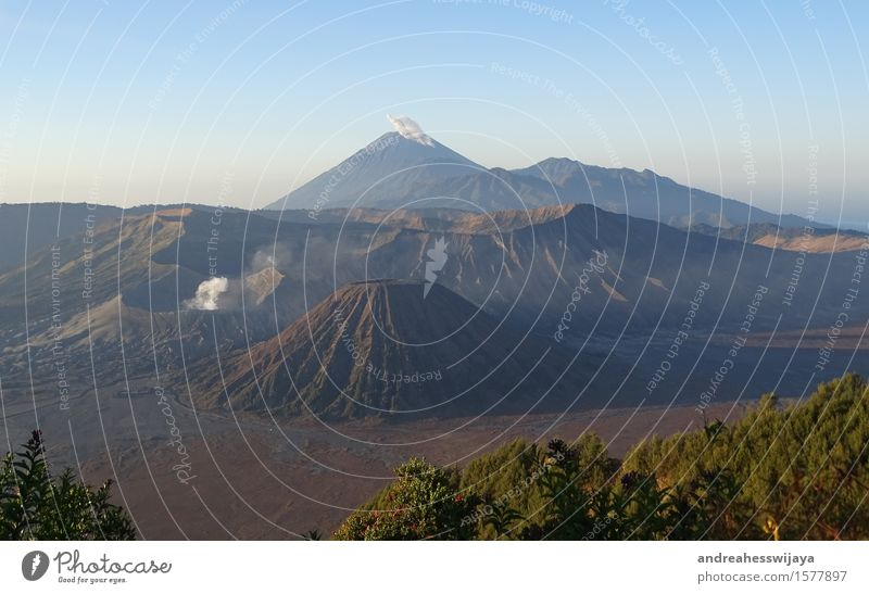 Zwei aktive Vulkane in Java, Indonesien Natur Landschaft Erde Sand Feuer Schönes Wetter Berge u. Gebirge Gipfel Bromo Semeru Insel Abenteuer Asien Rauchwolke