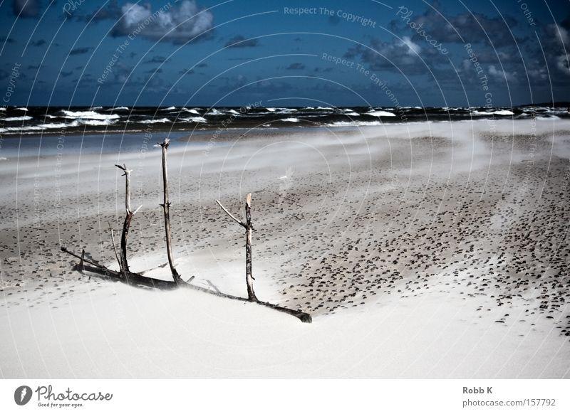 wind of change Natur Himmel Meer Sommer Strand Wolken Ferne Freiheit Sand Wellen Küste Wind Erde Ast Ostsee Polen